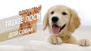 Плюшевая игрушка для собак - Лось   Обзор игрушки для собак от Трикси    Trixie dog toy rewiev