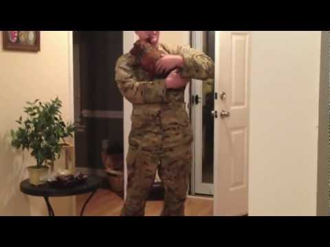 Soldier welcomed home from deployment by mini dachshund
