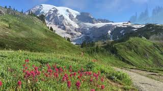 Driving & Hiking Mount Rainier National Park