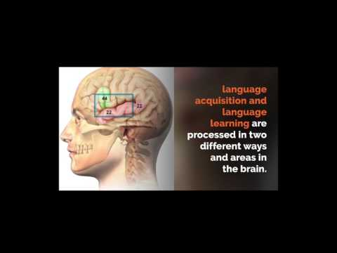Language Acquisition and Language Learning – Ute's International Lounge