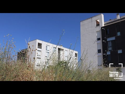 VÍDEO: Vecinos de El Zarpazo se quejan del riesgo que supone la falta de limpieza de los solares