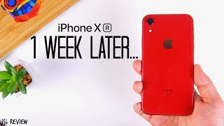 Download 1 Week Later...is the iPhone XR worth it?? - iPhone XR Review Mp3 and Videos