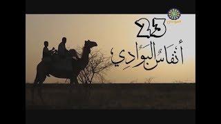 انفاس البوادي (23) - رمضان 2019