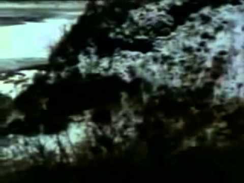 Alien Thunder (1974) Spaghetti Western Movies