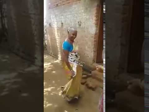 ମୟୁର କେ ଦେଖିକରି ଧନରେ ଗିଝାଁ ଗିଝାଁ... sambalpuri superhit comedy video