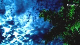 Природа, релаксация, музыка, горы, океан, лес(Это видео создано с помощью видеоредактора YouTube (http://www.youtube.com/editor), 2015-07-27T10:03:44.000Z)