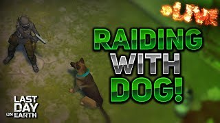 RAIDING WITH MY DOG! - Last Day On Earth: Survival LIVESTREAM