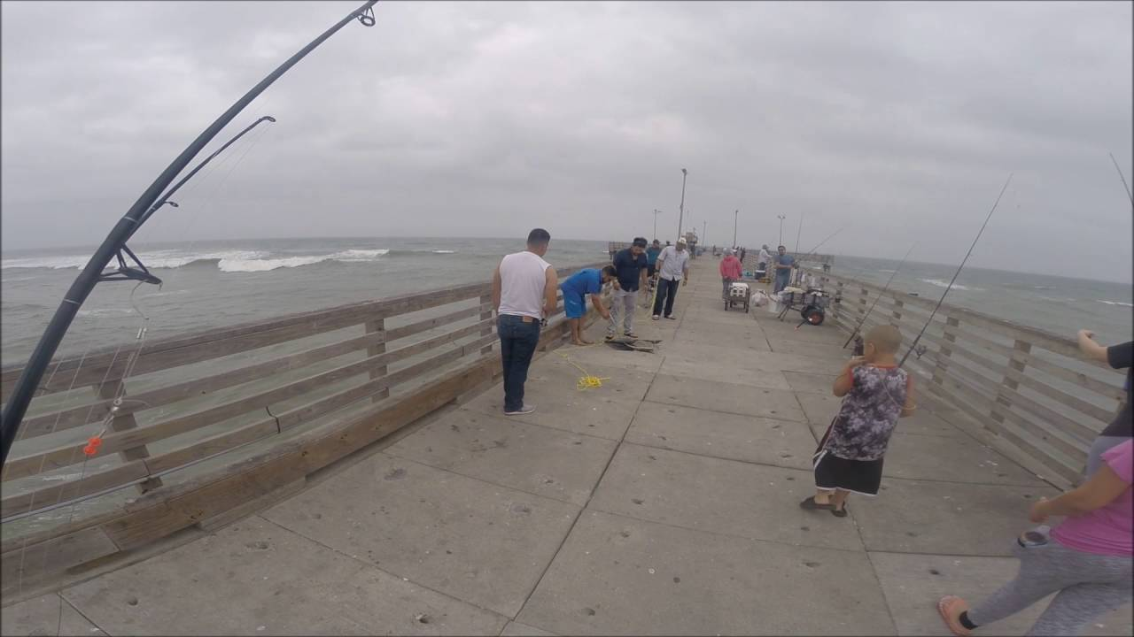 Texas coastal fishing part 3 shark jacks and reds bob for Port aransas jetty fishing report