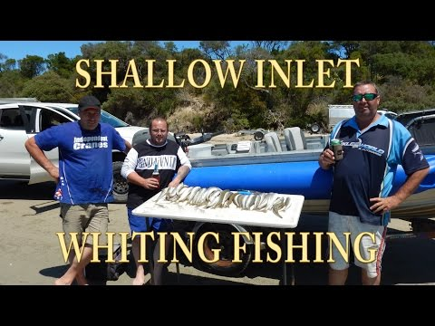 Shallow Inlet Whiting Fishing Oz Weekend 2017