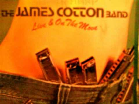 THE JAMES COTTON BAND - GOODBYE MY LADY