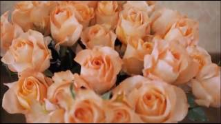 Тамбов Свадебное видео и фото 8915663 8815