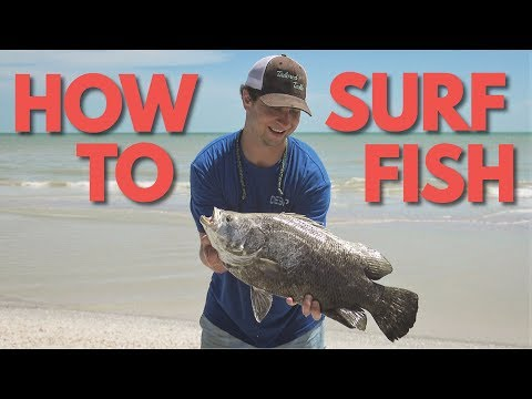 How To Surf Fish: Learn Surf Fishing For Beginners