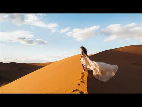 Clive Vaz Feat. Organic Muse - Arabian Sea
