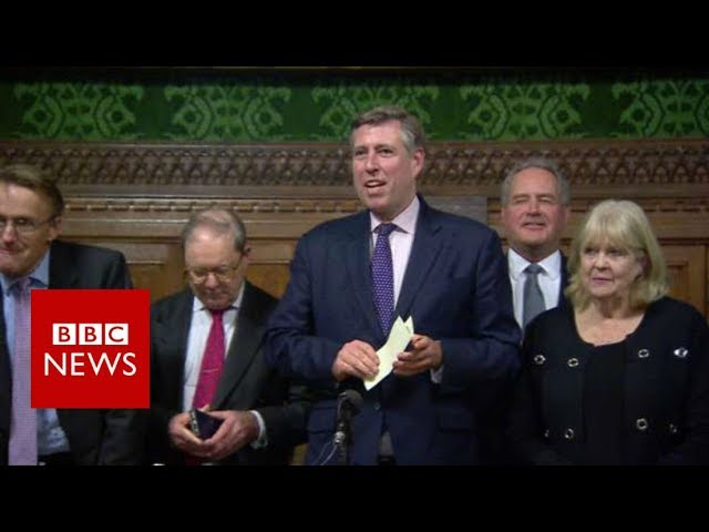 Theresa May wins confidence vote - BBC News