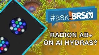 AI Hydras üzerinde Radion var AB+ spektrum oluşturabilirsiniz? | #AskBRStv