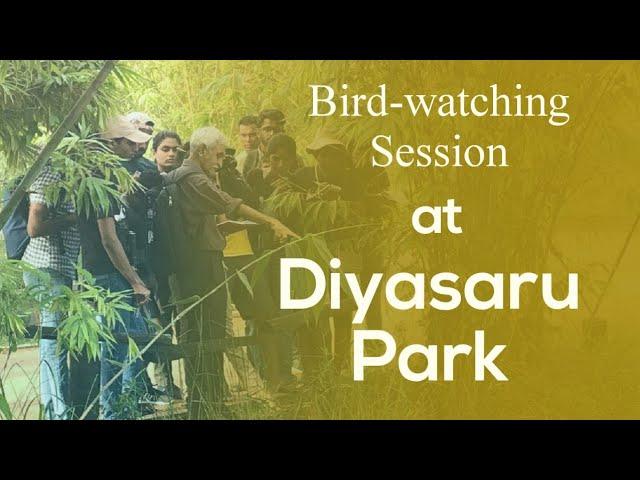 Bird-watching at Diyasaru Park
