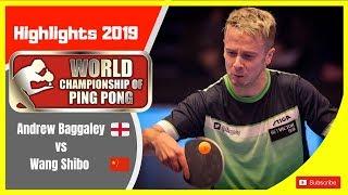 Andrew Bagggaley(England) vs Wang Shibo(China)World Championship of Ping Pong 2019