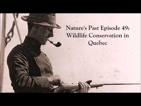 Nature's Past Episode 49: Wildlife Conservation in Quebec