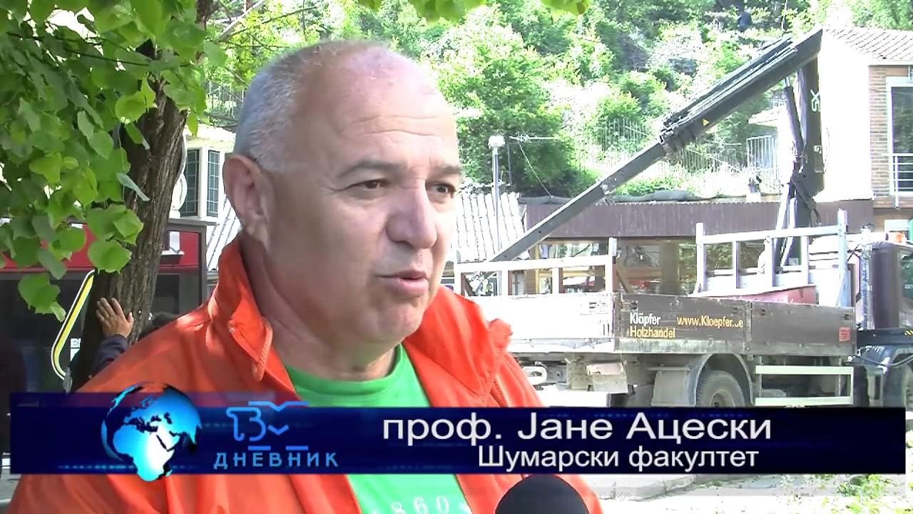 ТВМ Дневник 12.05.2017