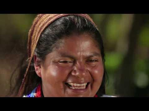 Ahora los Cafeteros colombianos cuentan con acceso gratuito a Internet | C49 N7 #FuturoDigitalTV