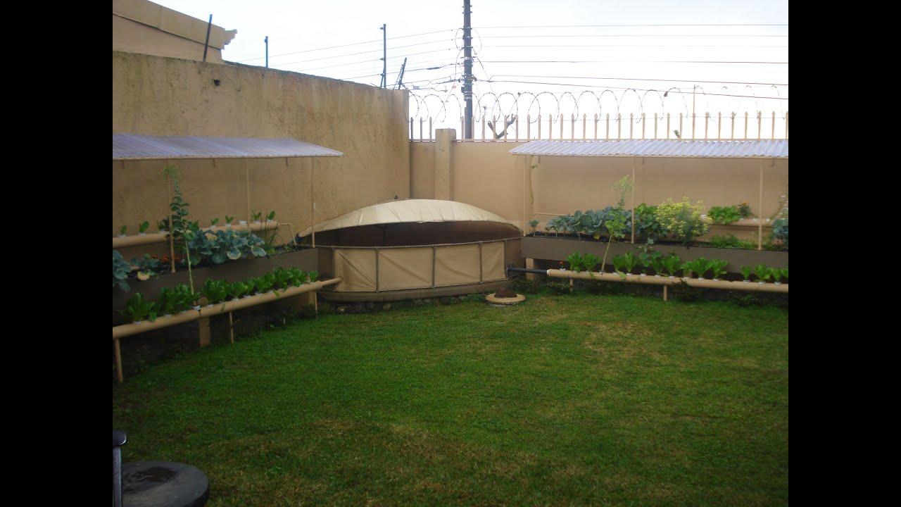 Build Aquaponic Garden