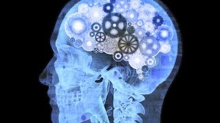 Awesome Human Brain And Quantum Physics Documentary 2015 HD