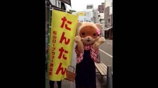 松山ロープウェイ商店街マスコットキャラクター   たんたん 松山まみ 動画 19