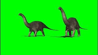 Green Screen Apatosaurus Dinosaur 2  Apatosaurus Dinosaur Walking