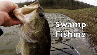 swamp bassin kayak fishing