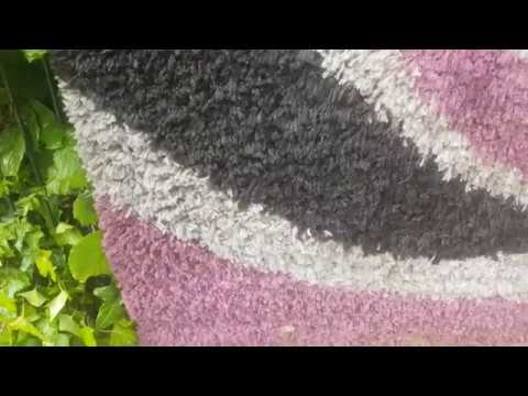 teppich reinigen extrem youtube. Black Bedroom Furniture Sets. Home Design Ideas