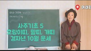 [사주역학기초5]호랑이띠,말띠,개띠 경자년 10월 운세