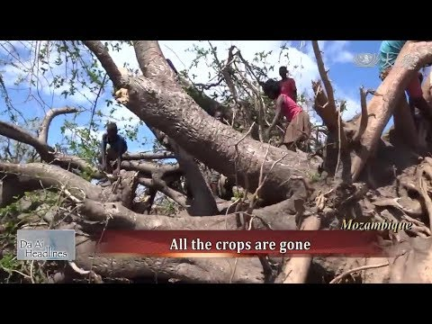 The Aftermath Of Cyclone Idai In Mozambique - Tzu Chi International Relief (20190413)