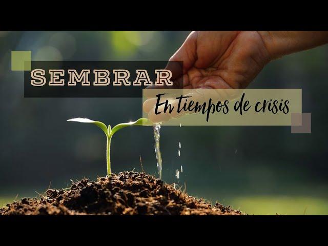 Sembrar en tiempos de crisis | Pr. Benigno Sañudo
