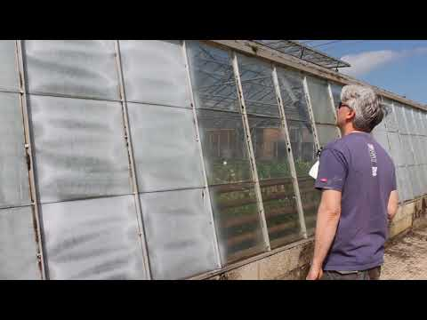 Applying Thorndown Peelable Glass Paint with electric sprayer
