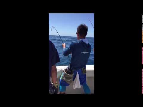 Fishing Belt 1
