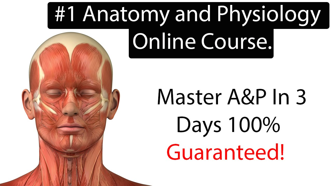 Anatomy and Physiology Online Course. Learn Anatomy and Physiology ...