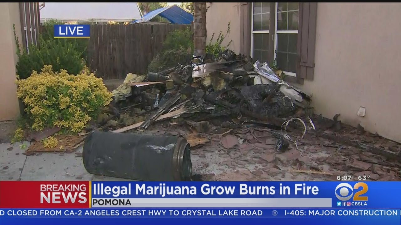 Fire At Pomona Home Reveals Illegal Marijuana Grow House