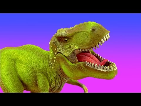 Dinosaur Dinosaurs Tyrannosaurus T Rex Spinosaurus Giganotosaurus 공룡 ไดโนเสาร์ SuperFunReviews