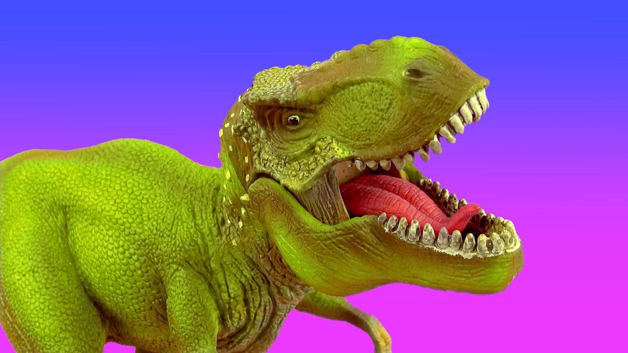 Dinosaur Dinosaurs Tyrannosaurus T Rex Spinosaurus