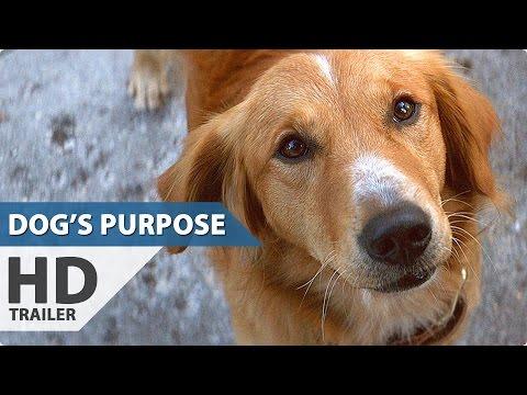 A DOG'S PURPOSE Trailer (2017) Britt Robertson Movie