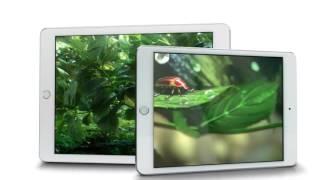 видео Моноблок Apple iMac купить в интернет-магазине Apple Store 24