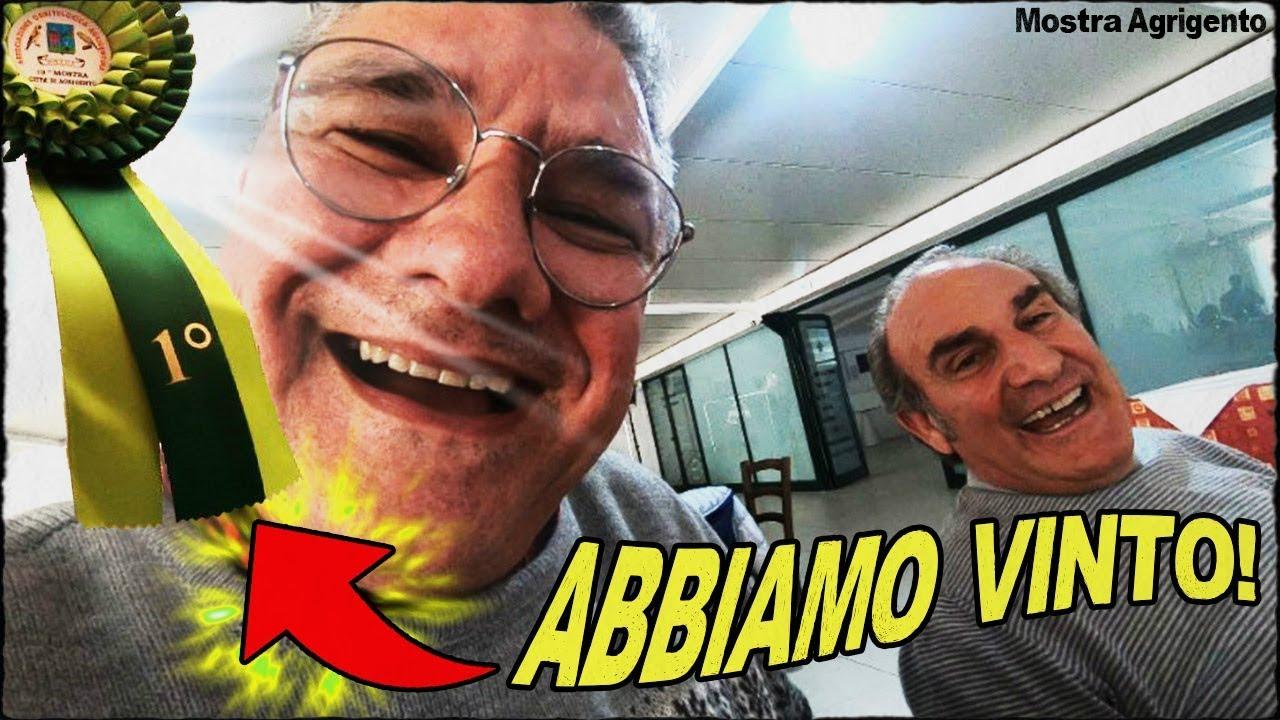 Mostra di Agrigento! - YouTube
