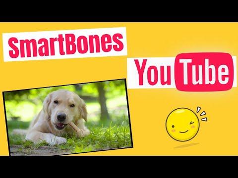 smartbones-smartsticks-rawhide-free-dog-chew,-made-with-real-ingredients,-rawhide