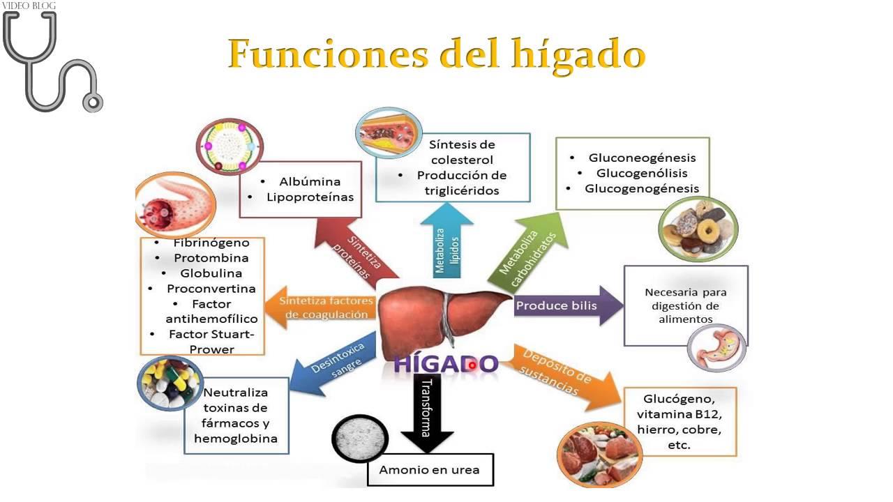 ecran antigene giardiacryptosporidiume histolytica)