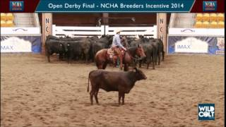 Spin the Cat & Grant Quigley - Open Derby Final, NCHA Breeders Incentive