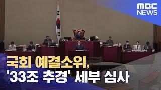 국회 예결소위, '33조 추경' 세부 심사 (2021.…