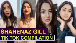 Shenaaz Gill FUNNY unseen TikTok video will Make your Day | Celebs TikTok | BiscootTv