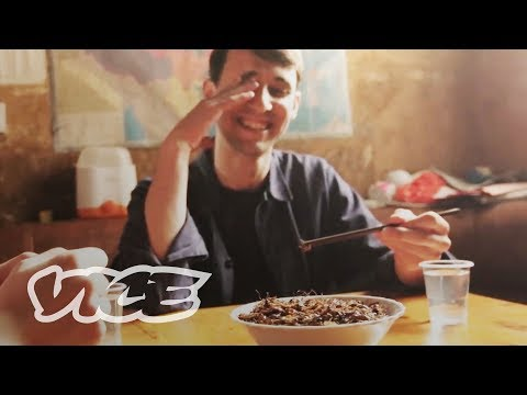 Inside China's Edible Insect Industry (Part 2)