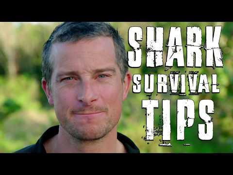 Bear Grylls' Top 3 Shark Survival Tips   Shark Week 2018