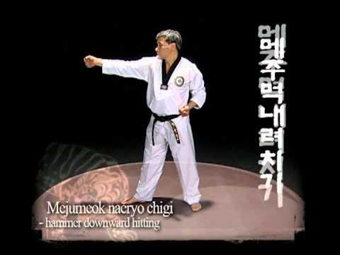 Taekwondo Basic Motions